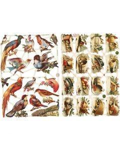 Figure fustellate vintage, Volatili, 16,5x23,5 cm, 2 fgl./ 1 conf.
