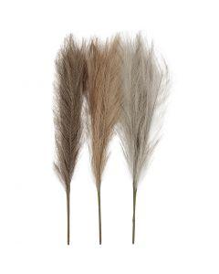 Erba di pampa, L: 50 cm, rosa chiaro, marrone chiaro, grigio chiaro, 3 pz/ 1 pacch.