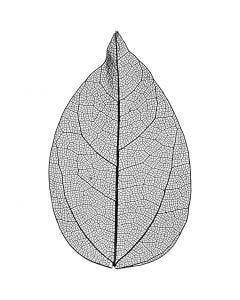 Foglie, L: 6-8 cm, nero, 20 pz/ 1 conf.