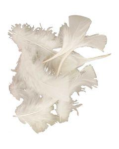 Piume, misura 7-8 cm, bianco, 50 g/ 1 conf.