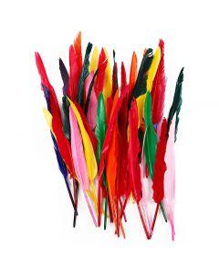 Piume, L: 29-31 cm, colori asst., 100 pz/ 1 conf.