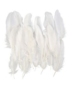 Piume, bianco, 350 pz/ 1 conf.