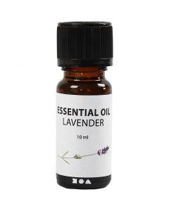 Olio profumato, Lavanda, 10 ml, 10 ml/ 1 bott.