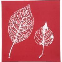 Scheda stencil, foglie, 20x22 cm, 1 fgl.