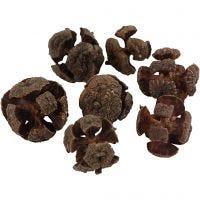 Pigne di cipresso, diam: 20 mm, 110 g/ 1 conf.