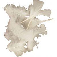 Piume, misura 7-8 cm, bianco, 500 g/ 1 conf.