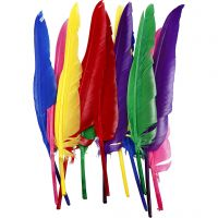 Piume, L: 27 cm, colori asst., 12 pz/ 1 conf.