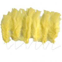 Piume, L: 11-17 cm, giallo, 18 pacch./ 1 conf.