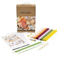 Kit didattico in carta crespa, 105 g, colori asst., 1 set