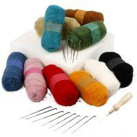 Needle felting - kit principianti, colori asst., 1 set