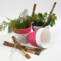 Painted Terracotta Flower Pots with Decoupage