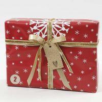 Pacchetto regalo rosso, bianco e oro