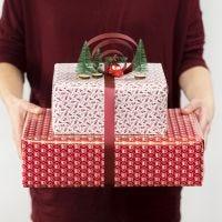 Decorazione regalo con fiocco e sagoma in miniatura