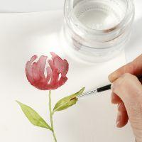 Come dipingere gli acquerelli usando le tecniche di sollevamento