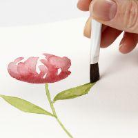 Come dipingere acquerelli con pennellate morbide
